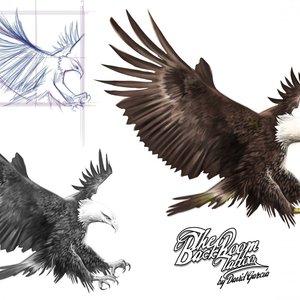 american_eagle_24059.jpg