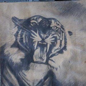 tigre_14660.jpeg