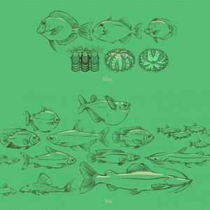 acuario_25945.jpg