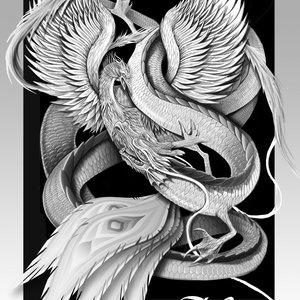 dragon_vs_phoenix_26068.jpg