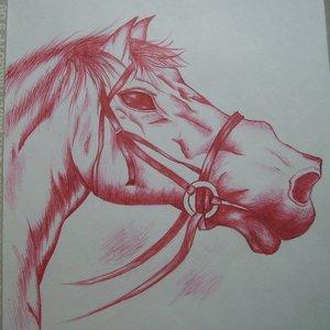 caballo_rojo_26356.jpg