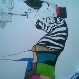 zebra_26711.jpg