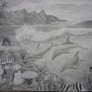 coral_15104.JPG