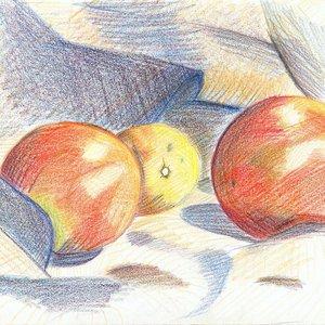 Naranja_13725.JPG