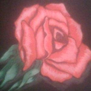 rosa_15771.jpg