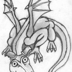 Dragoncito_16559.jpg