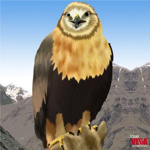 Aguila_17028.jpg