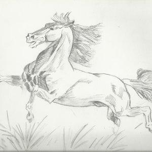 mi_bloc_de_primaria_2003_caballo_saltando_32724.jpg