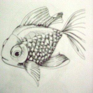 fish_28088.JPG
