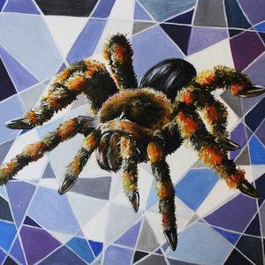 tarantula_33460.jpg