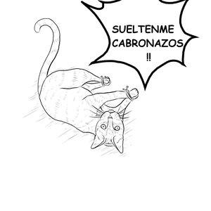azucarillo_28194.jpg