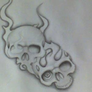 vans skulls