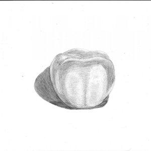 tomate_28370.jpg