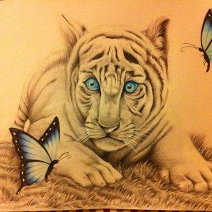 tigre_de_bengala_destacando_los_ojos_con_las_mariposas_espero_escanearlo_y_qe_se_vea_mejor_la_proxim_38292.jpg