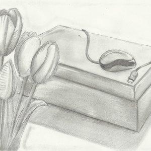 dibujo_a_lapiz_tulipan_caja_y_mouse_2_3_d_38931.jpg