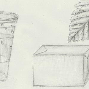 dibujo_a_lapiz_vaso_caja_hoja_2_3_d_40187.JPG