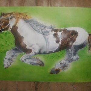 caballo_para_mi_vieja_en_proceso_40829.jpg