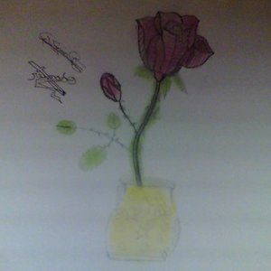 the_rose_43290.JPG