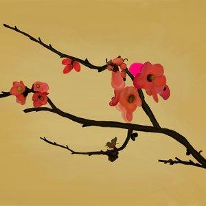 renacer_de_la_primavera_43357.png