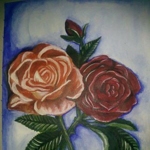 rosas :D
