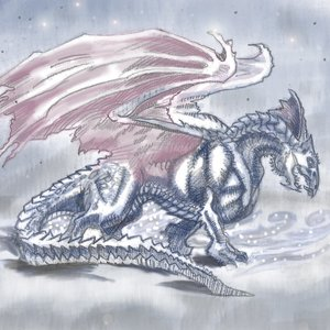 dragon_blanco_dungeons_and_dragons_45543.jpg