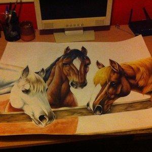 caballos_en_proceso_un_encargo_que_me_lleva_un_poco_de_faena_46122.jpg