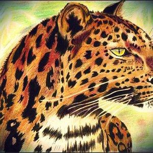 leopardo_46433.jpg