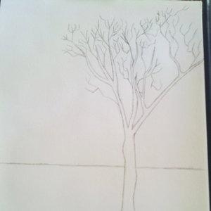 Boceto árbol solitario