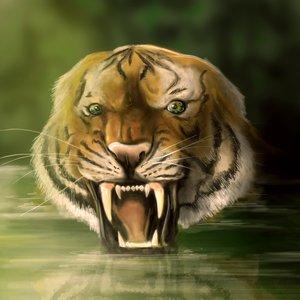 tigre_47285.jpg