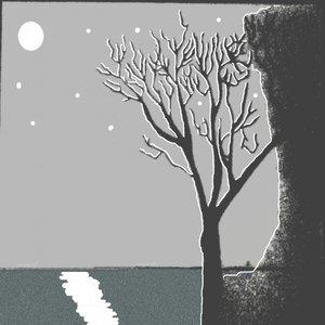 Árbol solitario de noche