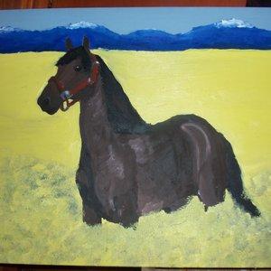 caballo_en_campo_de_flores_29787.JPG