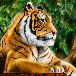 speed_painting_tigre_30254.jpg