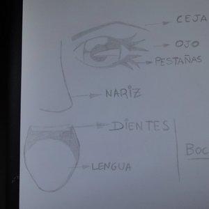 Aprendiendo español