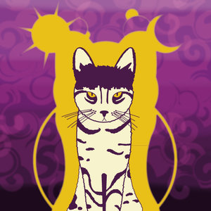 gato ying