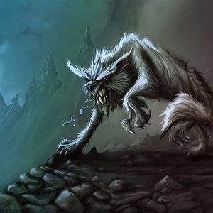 wolf_57840.jpg