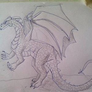 practicando_dragones_58781.jpg