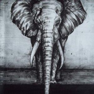 elephant_58866.JPG