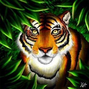 tigre_de_bengala_59418.jpg