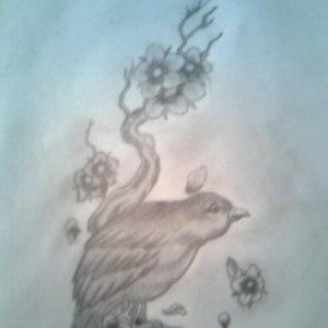 the_bird_59722.jpg
