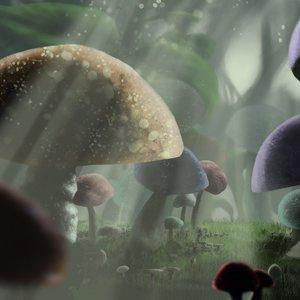 mushrooms_48531.jpg