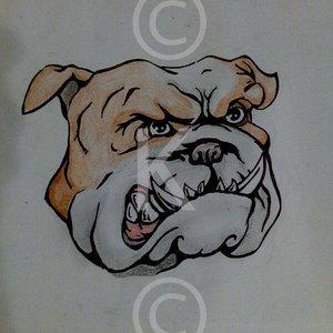 bulldog_60411.jpg