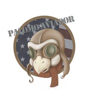 palomo_aviador_62904.png
