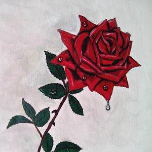 rosa_terminada_63123_0.jpg