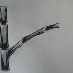 logo_bambu_48984.jpg