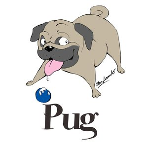 pug_64113.png