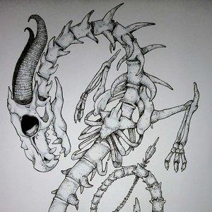 esqueleto_de_dragon_64214.jpg