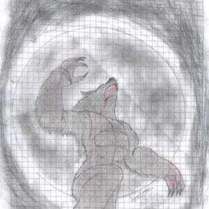 Hombre Lobo '_'