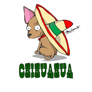 chihuahua_65302.jpg