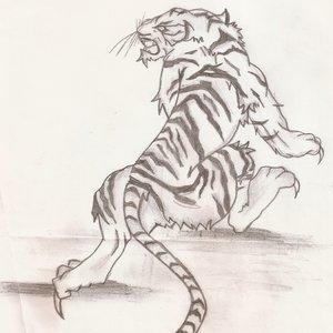 tigre_blanco_65842.jpg