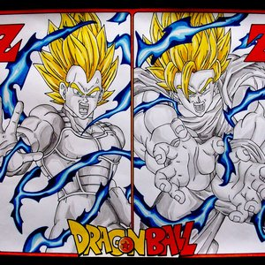Dragon Ball Z Goku y Vegeta